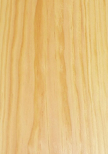 Wood Species Veneer Wood Veneer European Oak Veneer